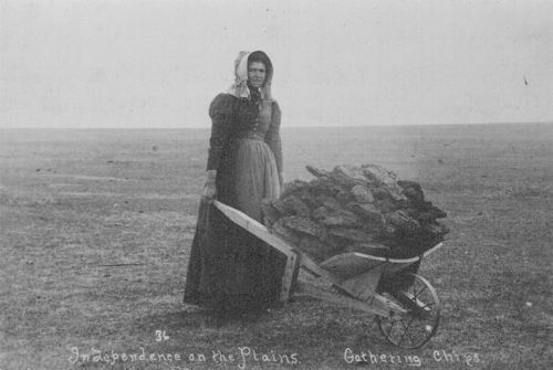 Ada McColl gathering buffalo chips near Lakin, Kansas - Page