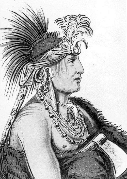 Illustration showing Chesh-oo-hong-ha, The Man of Good Sense, a distinguished man of the Kansa Indian nation
