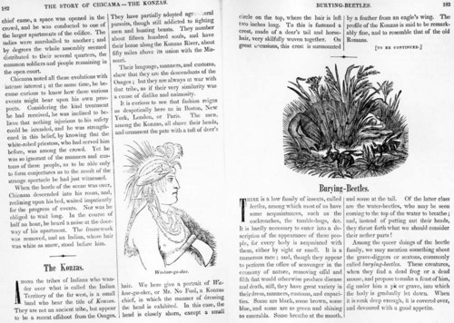 Kansa Indian Chief Wa-how-ga-shee - Page