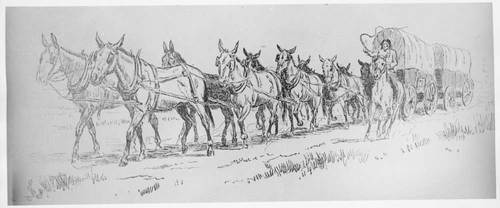 Indian freighter guiding covered freight wagons pulled by horses - Page