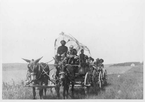 Pioneers in a covered wagon pulled by mules - Page