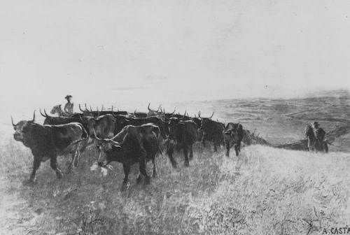 Cattle drive on the Great Plains - Page