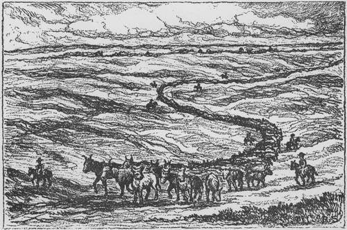 Lithograph of the Texas Cattle Trail - Page