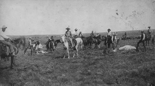 Cattle round-up - Page