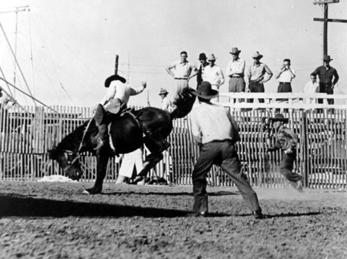 Rodeo scene - Page