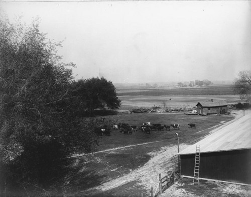 Buildings on the fairgrounds at Bismarck Grove, Kansas - Page