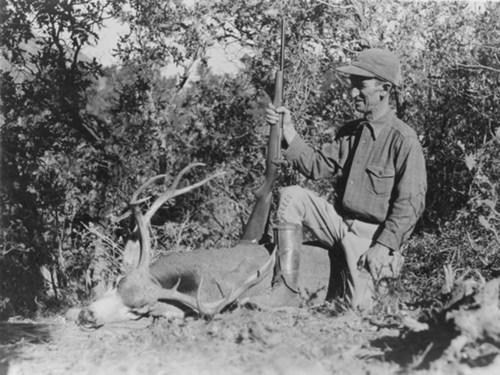 Deer hunting - Page