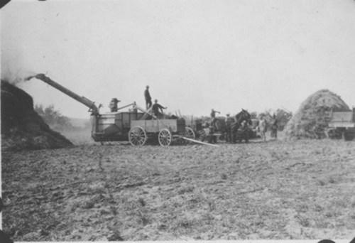 Threshing barley - Page