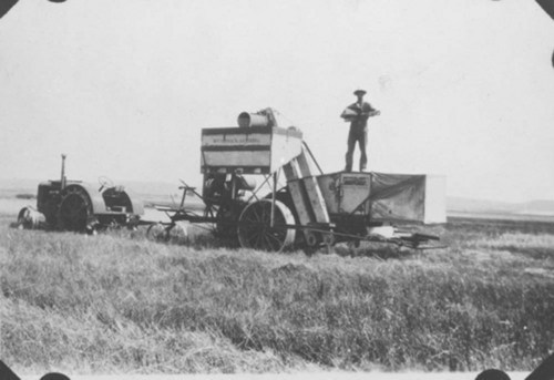 Harvesting wheat - Page