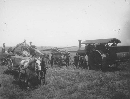 Threshing crew in western Kansas - Page