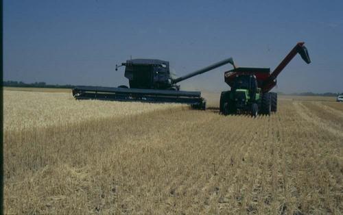Nelson and Enola Dreier farm, Hesston, Kansas - Page
