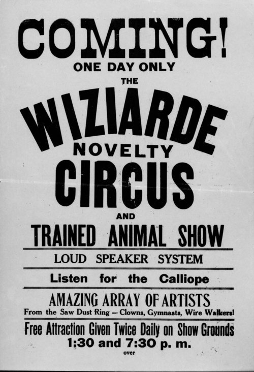 Wiziarde Novelty Circus - Page