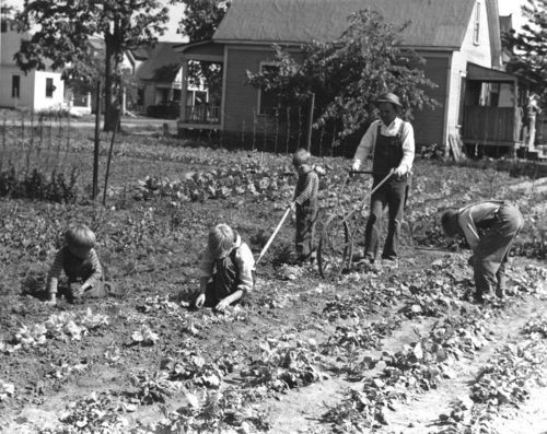 Victory garden, Wichita, Kansas - Page