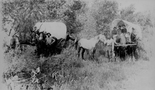 A wagon train on the Solomon River, Sheridan County, Kansas - Page