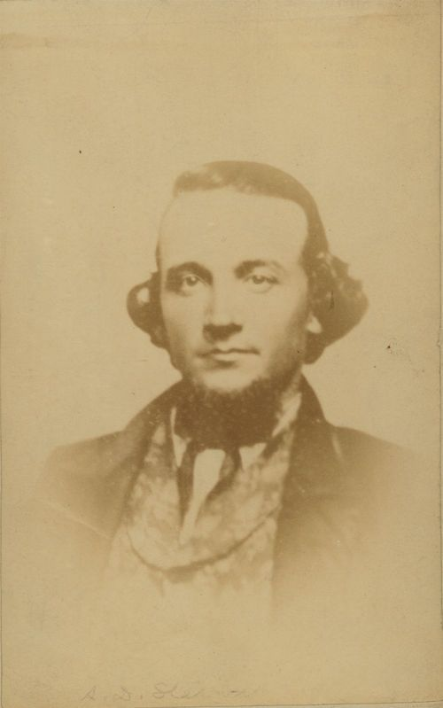 Aaron Dwight Stevens - Page