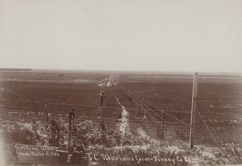 Photograph showing an irrigation ditch on the J. C. Mitchell farm, Finney County, 1890s