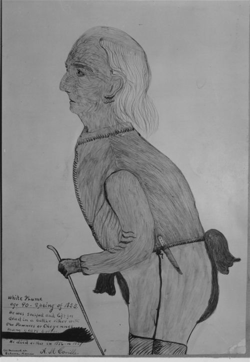 White Plume, Kansa Chief - Page