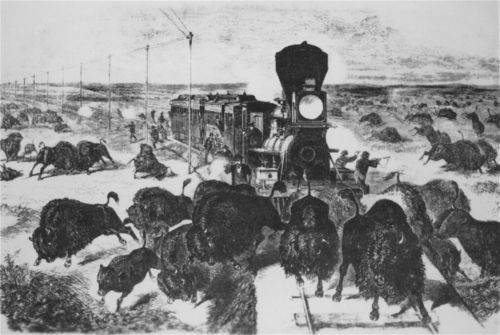The far west: shooting buffalo on the line of the Kansas Pacific Railroad - Page