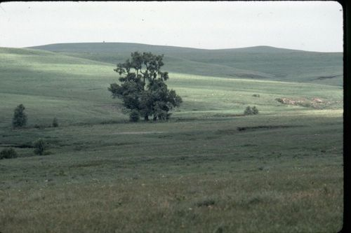 Flint Hills, Kansas - Page