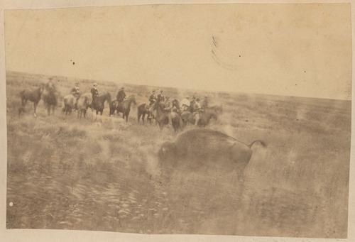 Buffalo hunt - Page