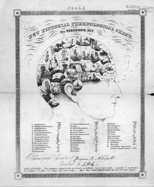 Phrenological chart for James B. Abbott - Page