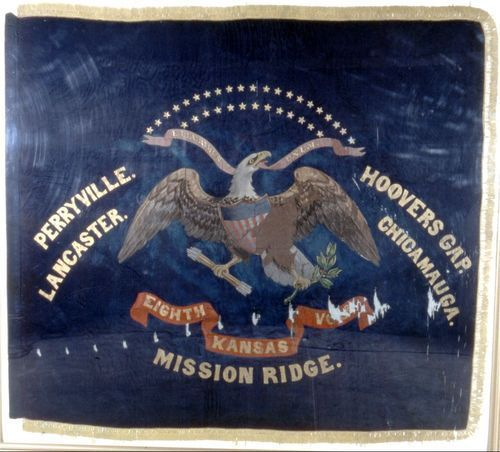 8th Kansas Volunteer Infantry flag - Page