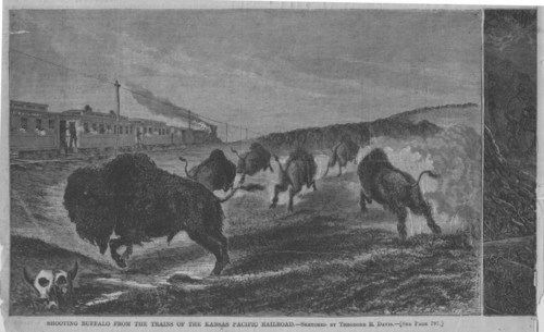 Shooting buffalo from a Kansas Pacific Railroad train - Page