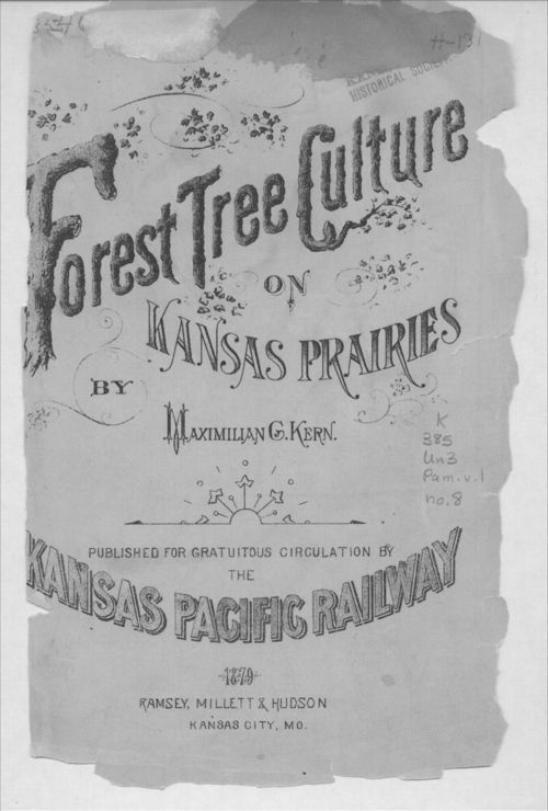 Forest Tree Culture on Kansas Prairies - Page