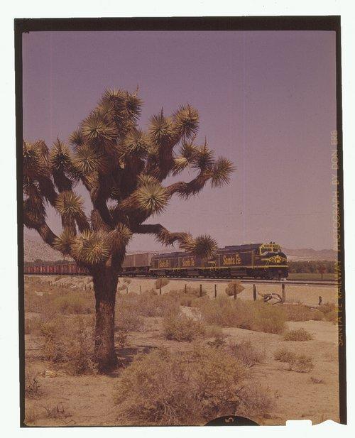 Atchison, Topeka & Santa Fe Raiwlay Company's westbound freight train, California - Page