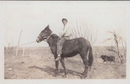 Elton Raymond Allen riding a mule - Page