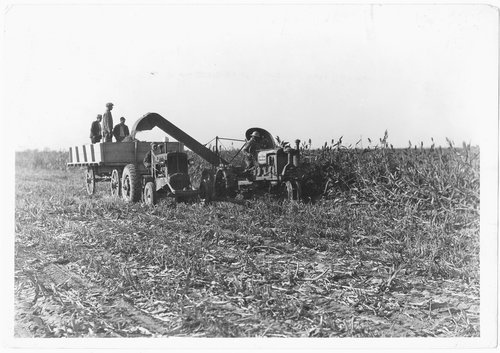 Feed crop harvested, ensilage cutter, Finney County, Kansas - Page