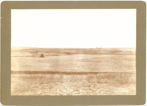Harvest scene, hay stacks, Finney County, Kansas - Page