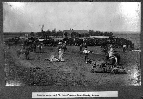 Branding cattle, Scott City, Kansas - Page
