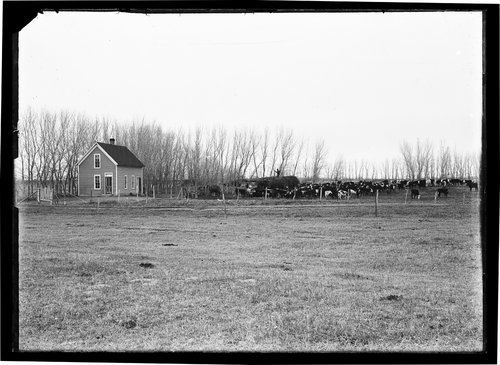 Residence, Finney County, Kansas - Page