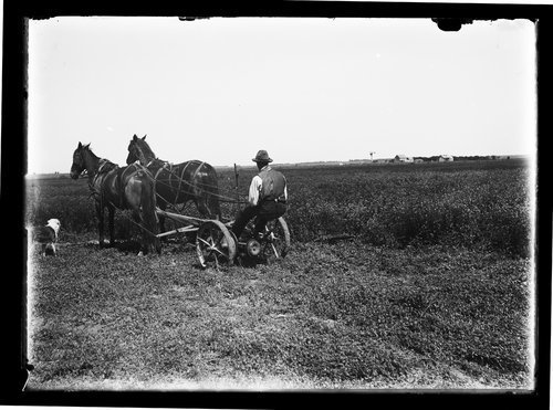 Mowing, Finney Couny, Kansas - Page