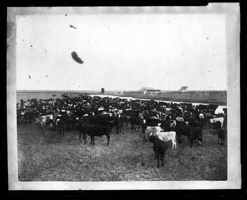 C. E. Doyle ranch, Clark County, Kansas - Page