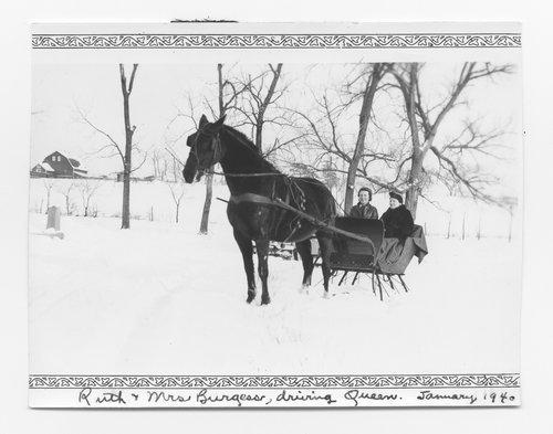 One horse sleigh, Topeka, Kansas - Page
