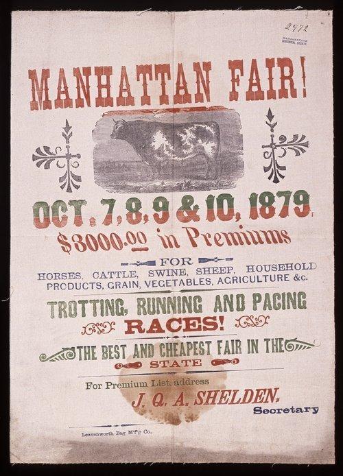 Manhattan fair! - Page