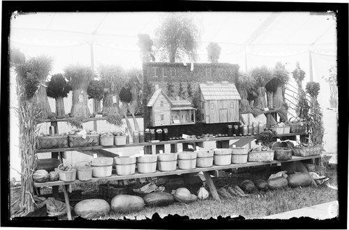 I. L. Diesem's agricultural exhibit, fair, Finney County, Kansas - Page