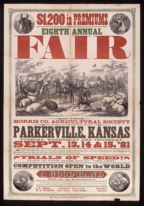 Eighth annual fair of the Morris County Agricultural Society, Parkerville, Kansas - Page