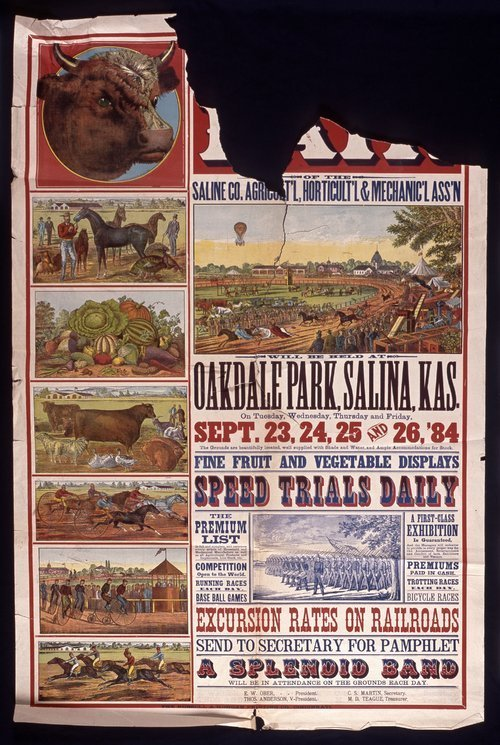 Annual fair of the Saline County Agricultural, Horticultural & Mechanical Association - Page