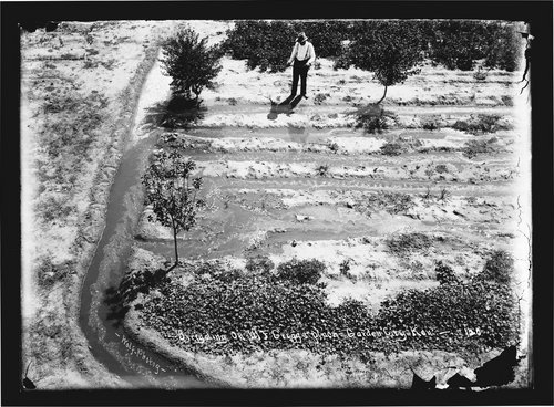 Irrigating on M. F. Griggs' place, Garden City, Finney County, Kansas - Page