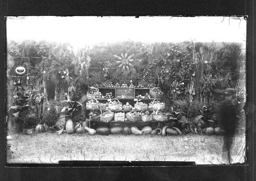 Agriculture exhibit, fair, Finney Coutny, Kansas - Page