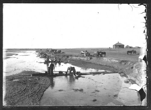 Men washing melon seeds in Arkansas River, Kearny County, Kansas - Page