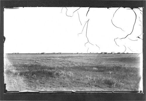 Hay stacks, Finney County, Kansas - Page