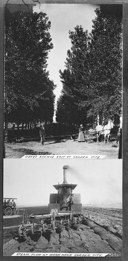 Doty's Avenue east of Garden City and a steam plow near Garden City, Kansas - Page