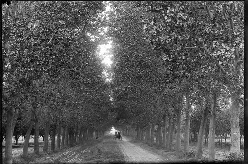 Lovers lane on Doty Avenue, Garden City, Kansas - Page