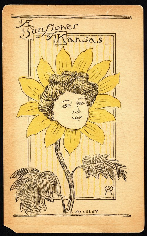 A sunflower of Kansas - Page