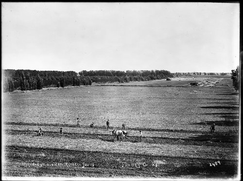 Birds-eye view of Richter farm, Finney County, Kansas - Page