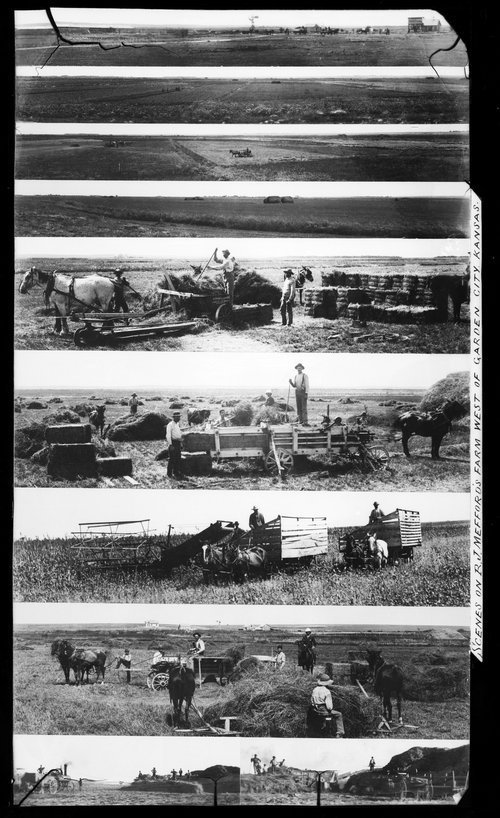 Agricultural scenes, Finney County, Kansas. - Page